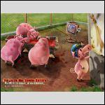 две иллюзии для двух видов свиней